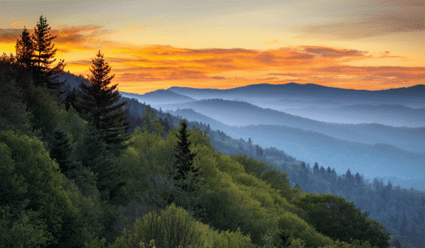Stage usa : explore le Great Smoky Mountains National Park