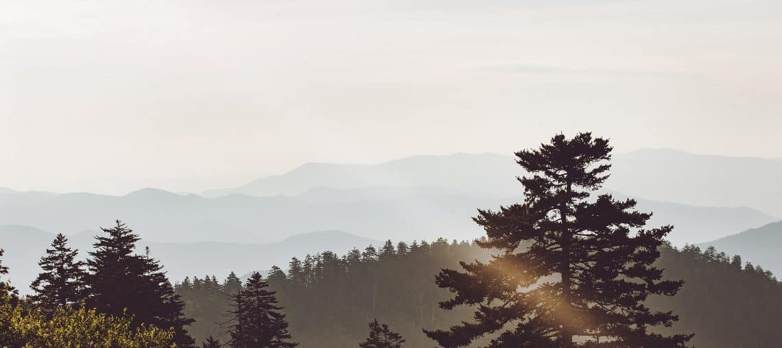 Stage aux USA : explore le Great Smoky Mountains National Park